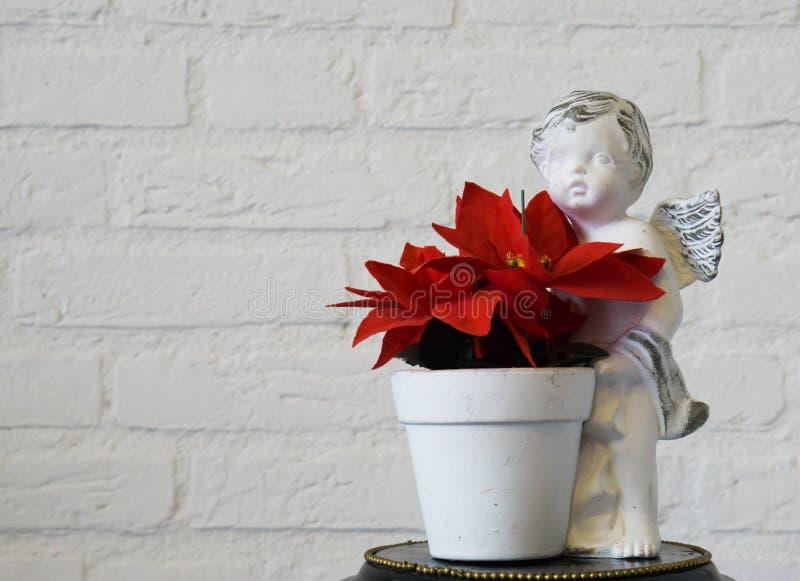 Κόκκινο λουλούδι αστεριών Χριστουγέννων flowerpot αγγέλου στο υπόβαθρο κινηματογραφήσεων σε πρώτο πλάνο και τουβλότοιχος στοκ εικόνες