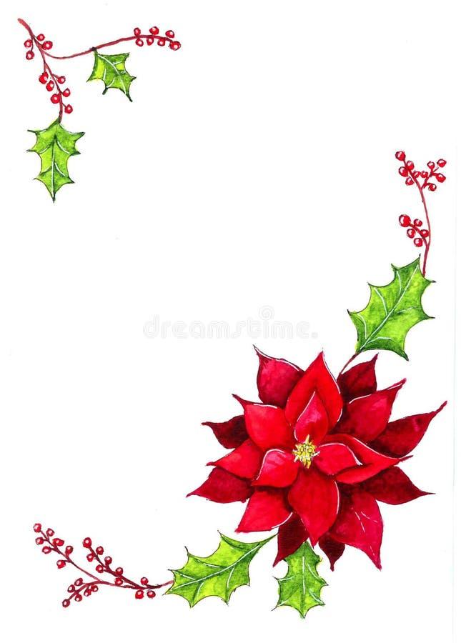 Κόκκινο λουλούδι του poinsettia στοκ εικόνα