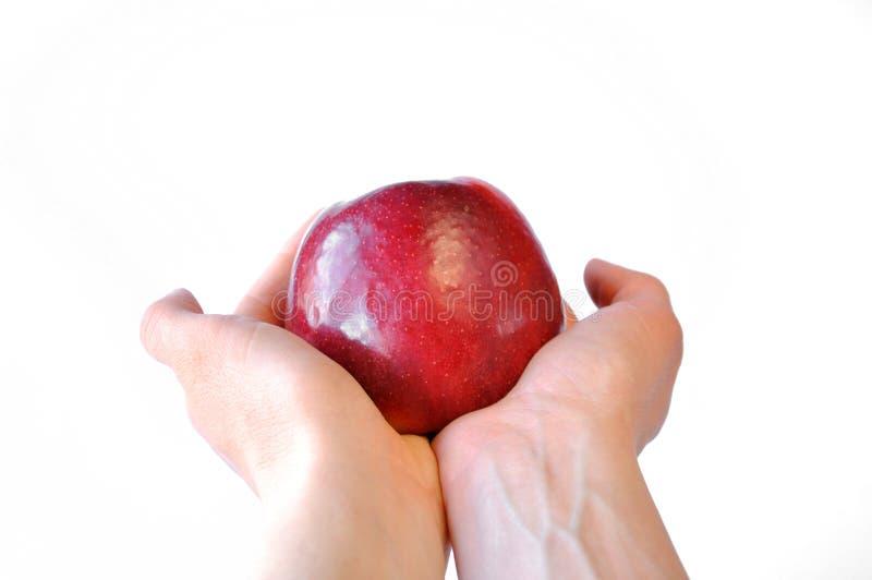 Κόκκινο μήλο υπό εξέταση στοκ φωτογραφία με δικαίωμα ελεύθερης χρήσης