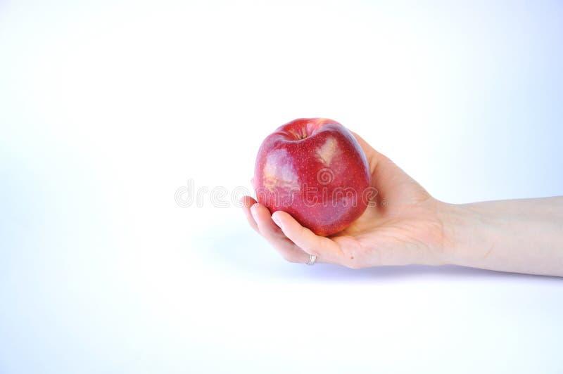 Κόκκινο μήλο υπό εξέταση στοκ φωτογραφίες