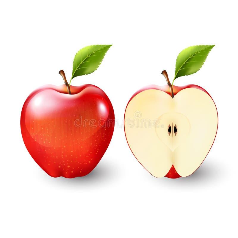 Κόκκινο μήλο και ένα δεύτερο του μήλου, φρούτα, διαφανή, διάνυσμα διανυσματική απεικόνιση