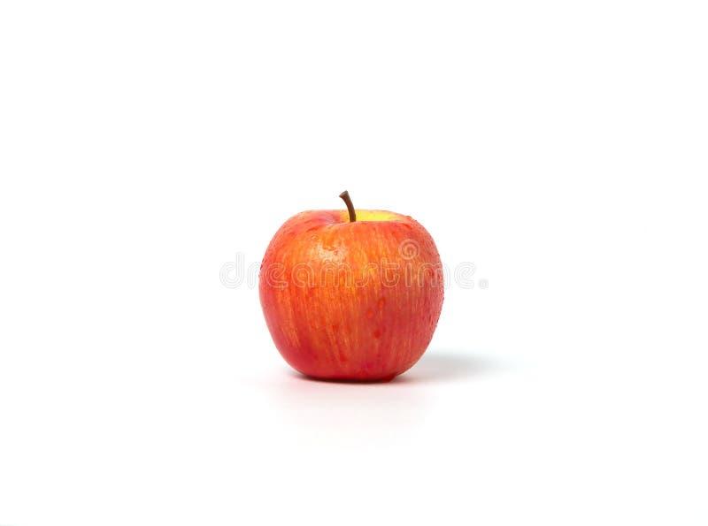 Κόκκινο μήλο στοκ εικόνες με δικαίωμα ελεύθερης χρήσης