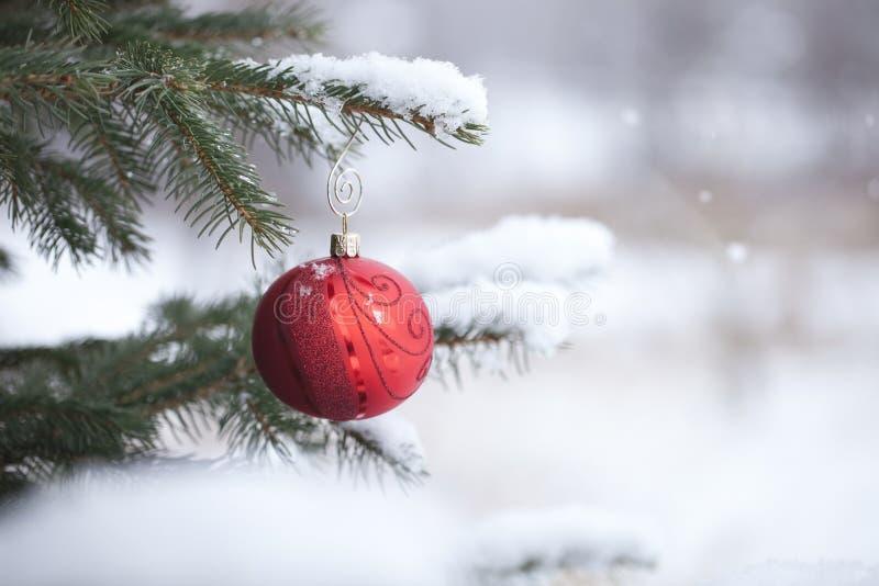 Κόκκινο μπιχλιμπίδι Χριστουγέννων με snowflakes στο χιονώδη κλάδο πεύκων στοκ φωτογραφία με δικαίωμα ελεύθερης χρήσης