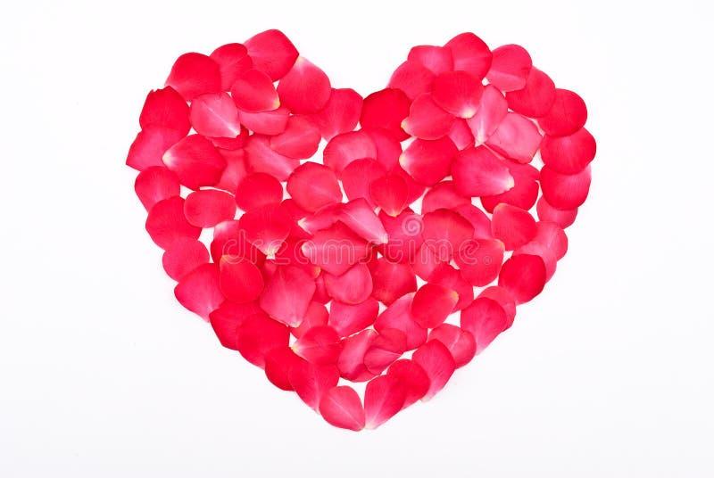 κόκκινο πετάλων καρδιών στοκ φωτογραφία