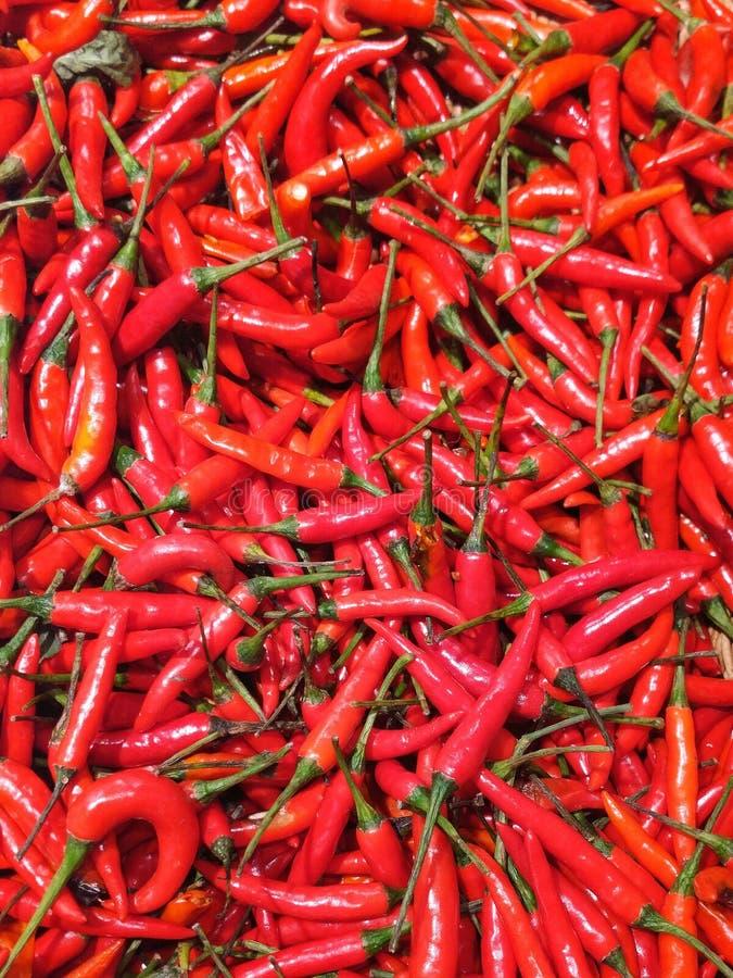 Κόκκινο πιπέρι στο καλάθι στοκ εικόνες με δικαίωμα ελεύθερης χρήσης
