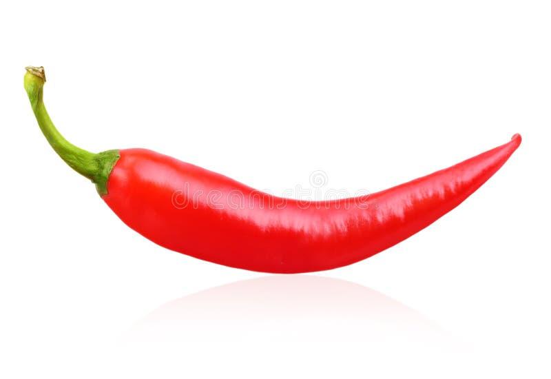 Κόκκινο πιπέρι τσίλι που απομονώνεται στοκ φωτογραφία με δικαίωμα ελεύθερης χρήσης