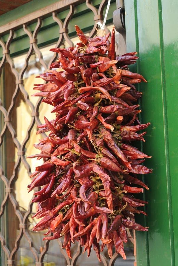 Κόκκινο πιπέρι στοκ φωτογραφίες
