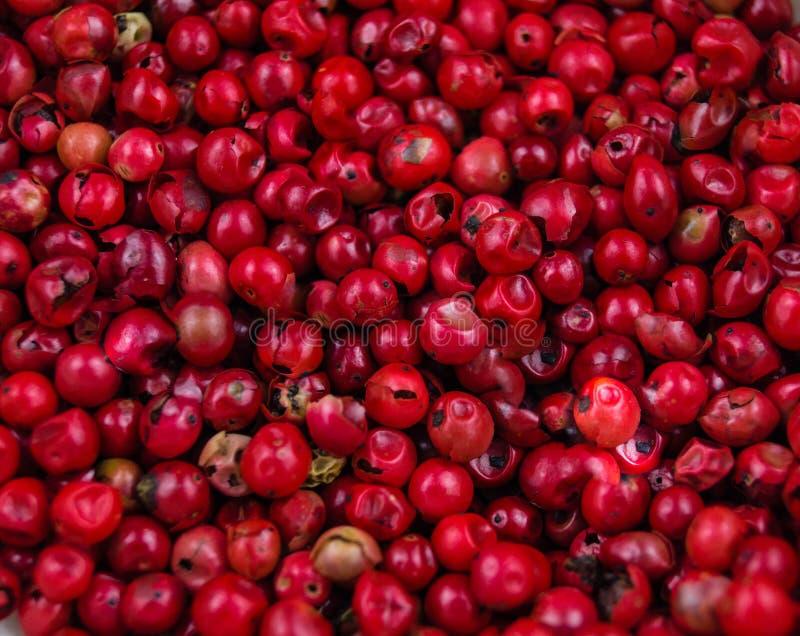 κόκκινο πιπεριών δημητρια&kap στοκ εικόνες