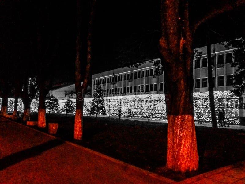 Κόκκινο στα γκρίζα φω'τα στοκ φωτογραφία με δικαίωμα ελεύθερης χρήσης