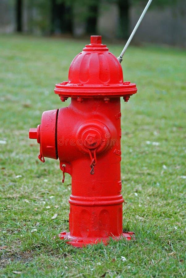 Κόκκινο στόμιο υδροληψίας πυρκαγιάς στοκ εικόνες με δικαίωμα ελεύθερης χρήσης
