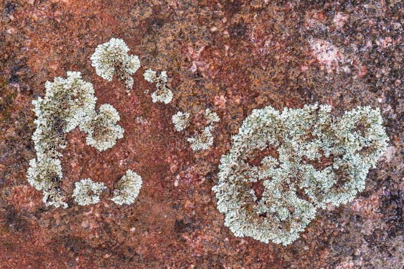 Κόκκινο σχέδιο σύστασης υποβάθρου πετρών βράχου στοκ φωτογραφία