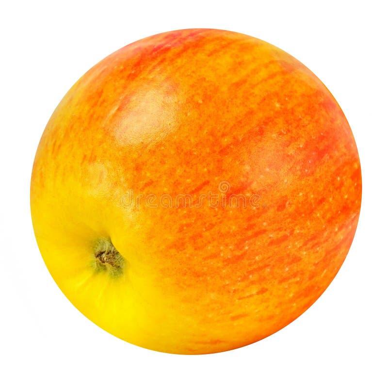 Κόκκινο της Apple με κίτρινο Ο ιδανικός κύκλος στοκ εικόνες