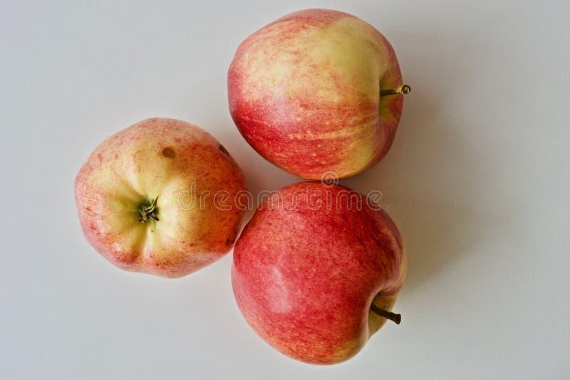 κόκκινο τρία μήλων στοκ εικόνα με δικαίωμα ελεύθερης χρήσης