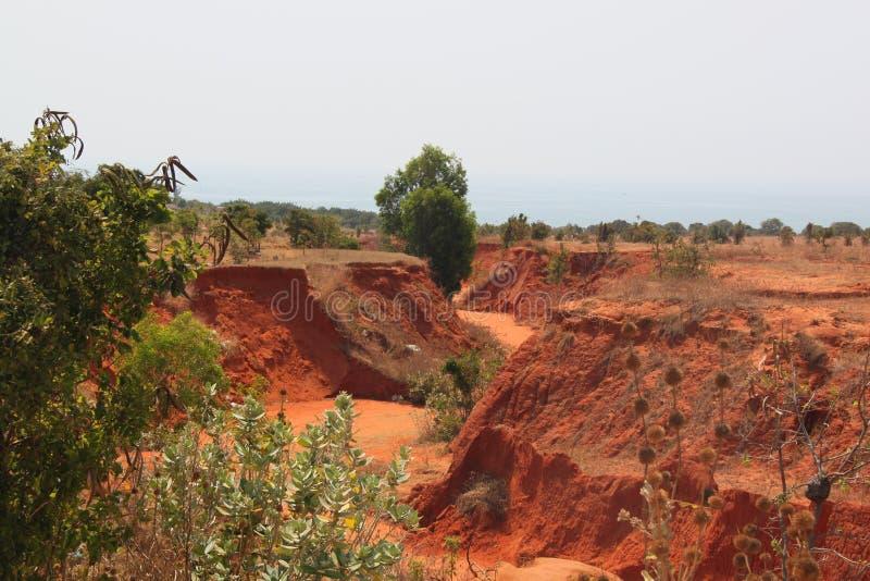 Κόκκινο φαράγγι στη μέση έρημο στοκ εικόνα