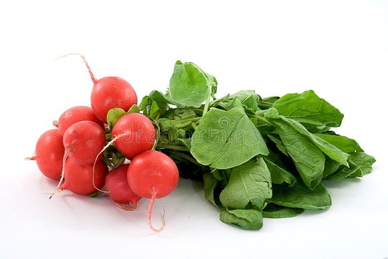 Κόκκινο φρέσκο ραδίκι με τα πράσινα φύλλα στο άσπρο υπόβαθρο στοκ εικόνα
