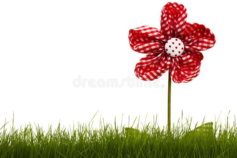 κόκκινο χλόης λουλουδ& στοκ εικόνες