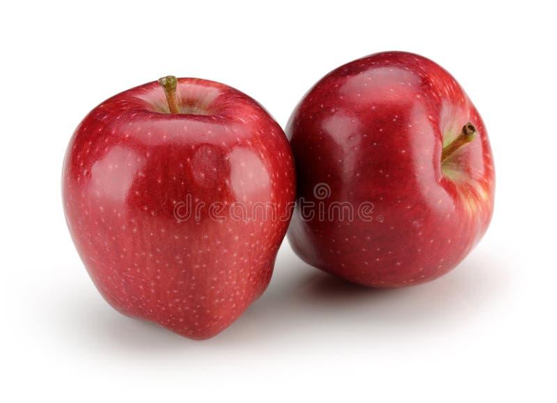 κόκκινο δύο μήλων στοκ φωτογραφία με δικαίωμα ελεύθερης χρήσης