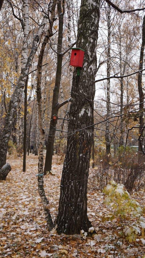 Κόκκινο birdhouse στοκ εικόνα