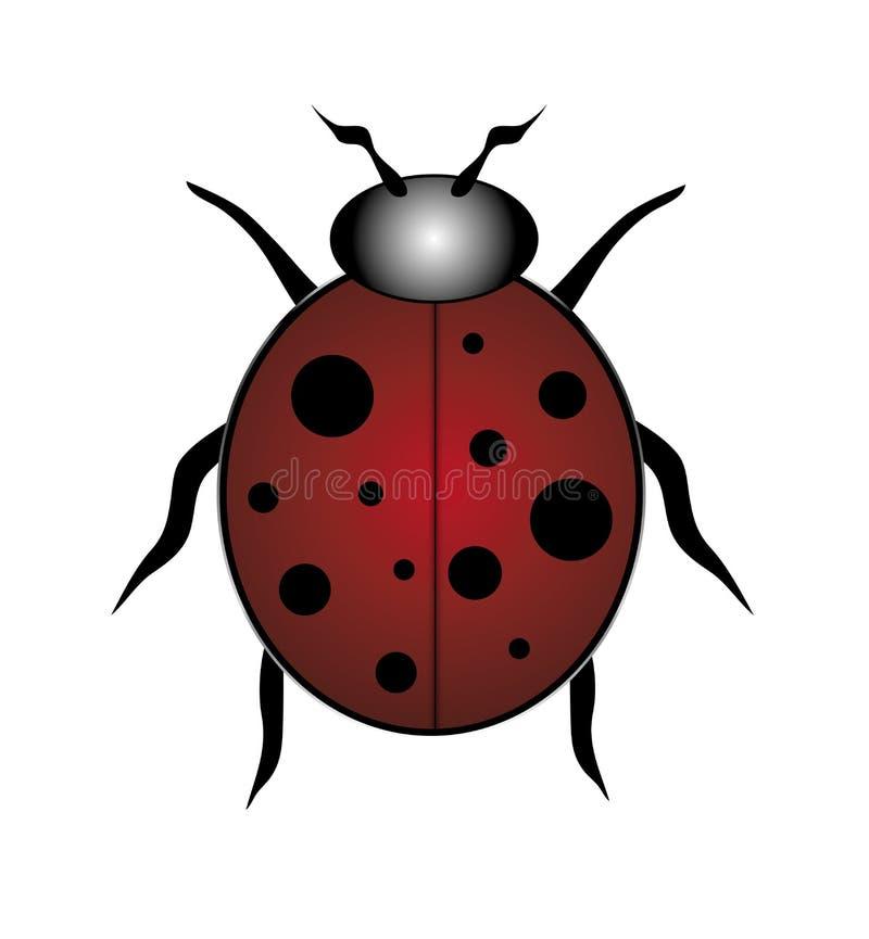 Κόκκινο Ladybug στοκ εικόνα