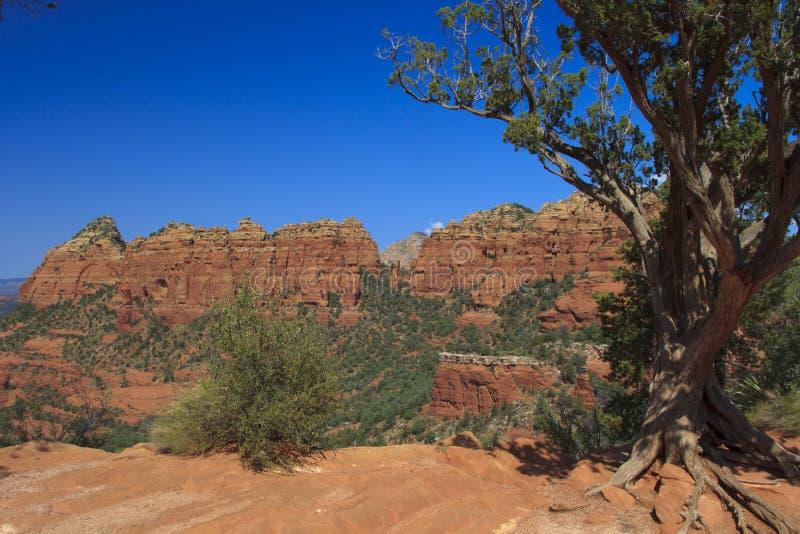 κόκκινο sedona βράχου χωρών της &Al στοκ εικόνα