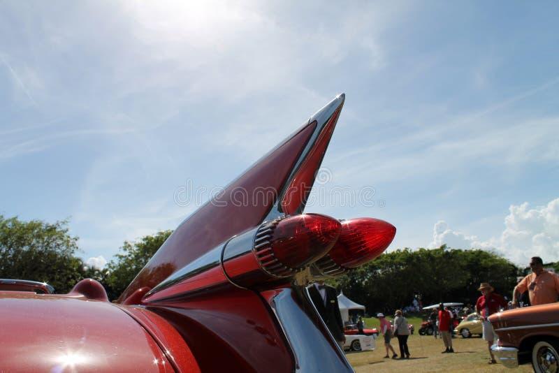 Κόκκινο tailfin αμερικανικό στοκ εικόνες