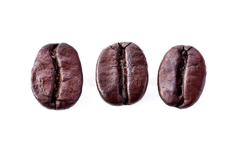 Κόκκοι καφέ απομονωμένοι σε λευκό στοκ εικόνα