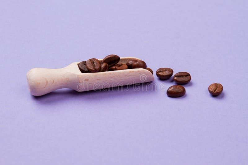 Κόκκοι καφέ σε κοντό ξύλινο κουτάλι ή κουταλάκι στοκ εικόνα με δικαίωμα ελεύθερης χρήσης