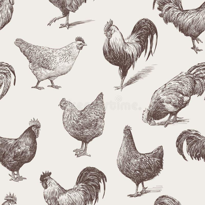 Κόκκορες και κότες διανυσματική απεικόνιση
