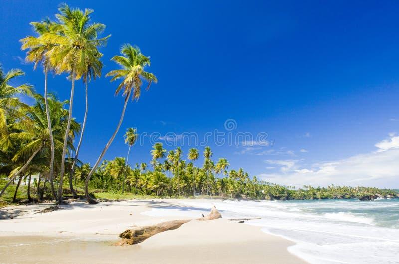 Κόλπος Cumana, Τρινιδάδ στοκ εικόνα με δικαίωμα ελεύθερης χρήσης