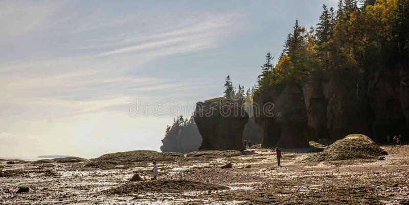 Κόλπος Fundy στον ανατολικό Καναδά στοκ εικόνες
