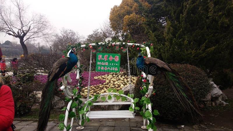 Κόμμα φεστιβάλ εορτασμού της Κίνας NewYear στοκ εικόνες με δικαίωμα ελεύθερης χρήσης
