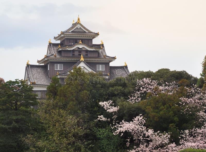 Κόρακας του Οκαγιάμα Castle που πετιέται κατά τη διάρκεια της εποχής άνθισης Sakura στοκ εικόνες με δικαίωμα ελεύθερης χρήσης