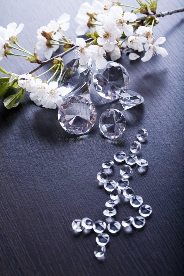 κόσμημα διαμαντιών φυσικό στοκ φωτογραφία με δικαίωμα ελεύθερης χρήσης
