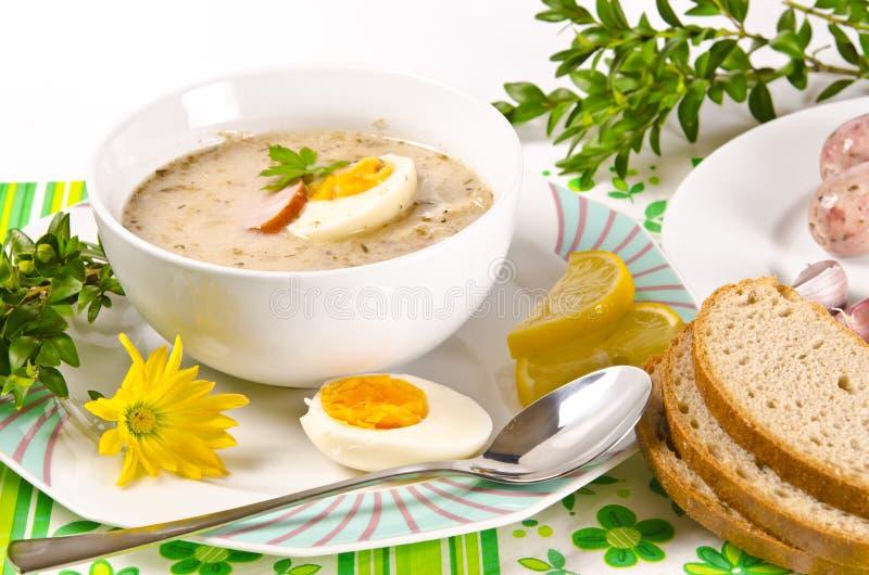 Κόσμιη πολωνική σούπα στοκ εικόνες με δικαίωμα ελεύθερης χρήσης