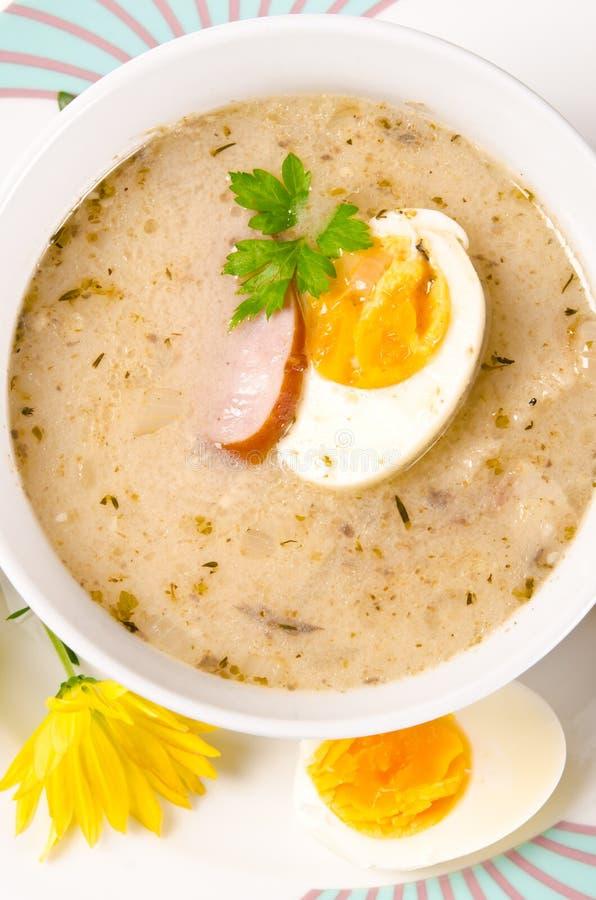 Κόσμιη πολωνική σούπα στοκ εικόνα