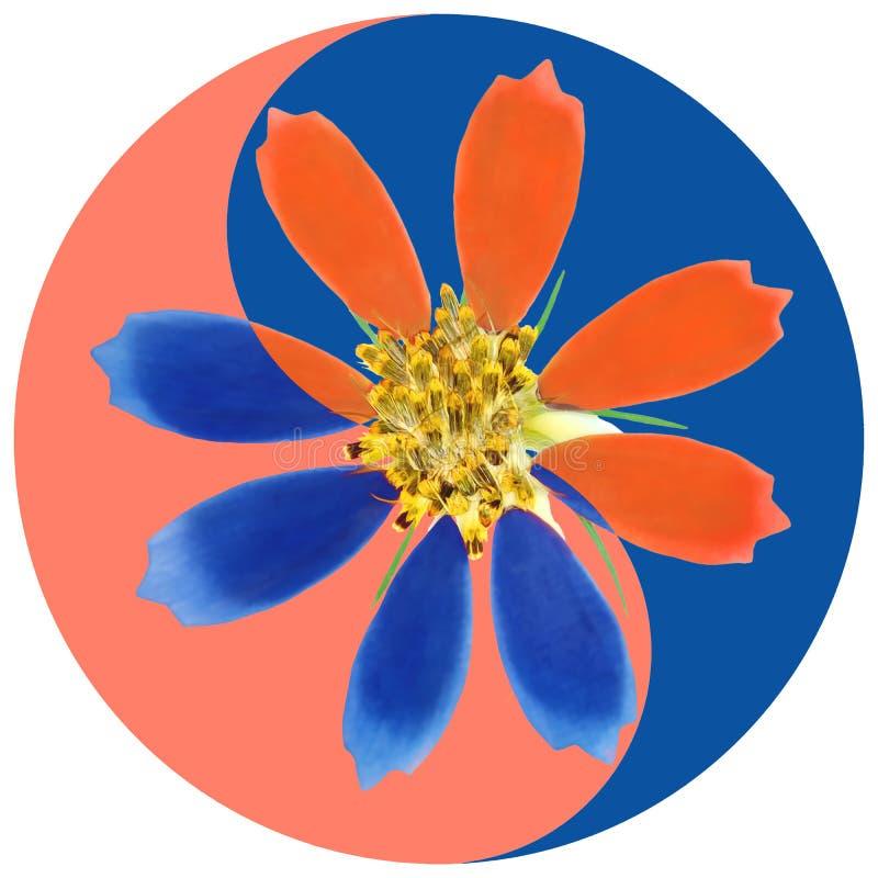 κόσμος Floral σύμβολο Yin Yang στοκ εικόνα