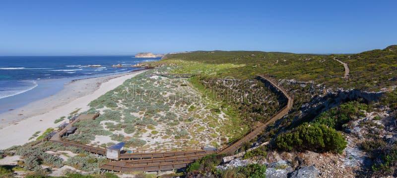 Κόλπος σφραγίδων στο θερινό τοπίο Νησί καγκουρό, Νότια Αυστραλία στοκ εικόνες