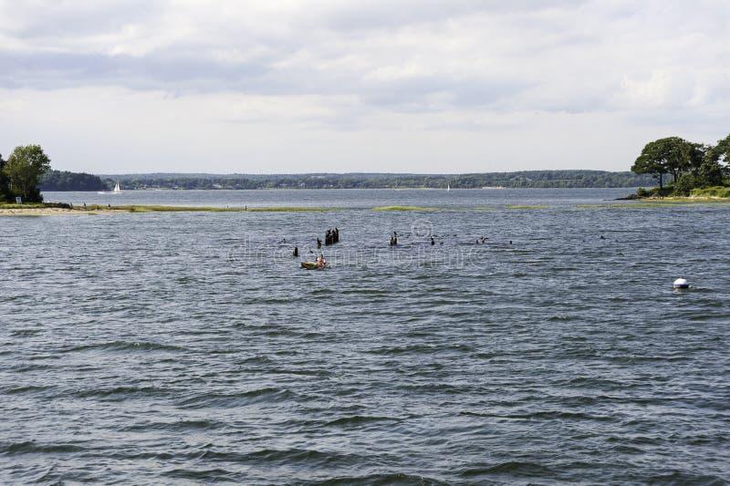 Κόλπος Casco Kayaker στοκ φωτογραφία με δικαίωμα ελεύθερης χρήσης