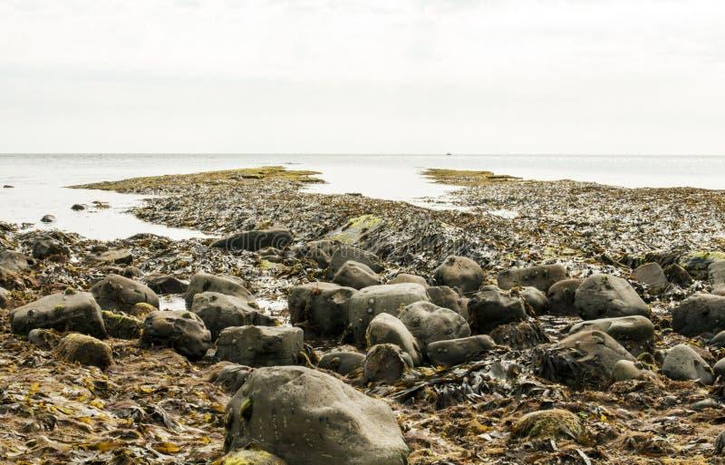 Κόλπος Kimmeridge, Dorset, UK στοκ εικόνες με δικαίωμα ελεύθερης χρήσης