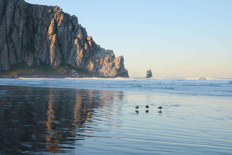 Κόλπος Morro στοκ εικόνες