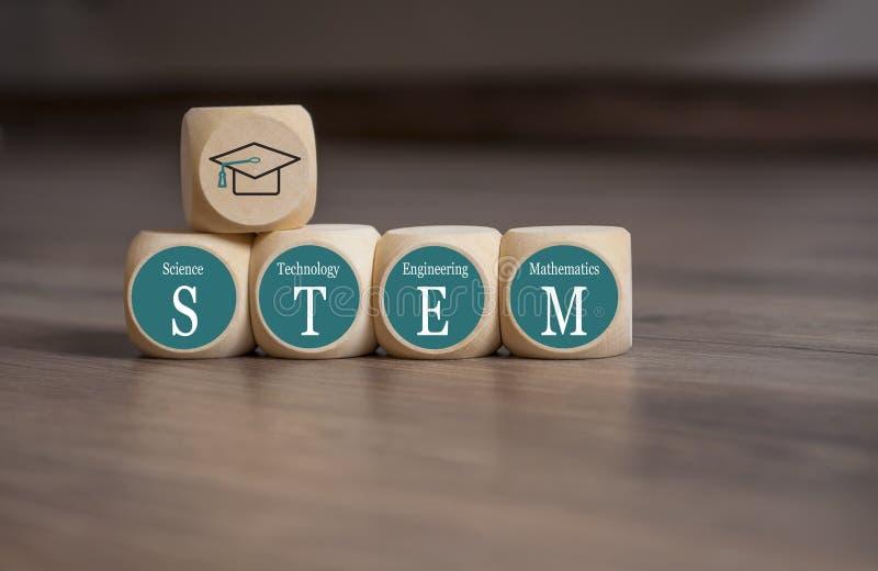 Κύβοι και ζάρια με STEM Science, Technology, Engineering and Math στοκ εικόνα με δικαίωμα ελεύθερης χρήσης