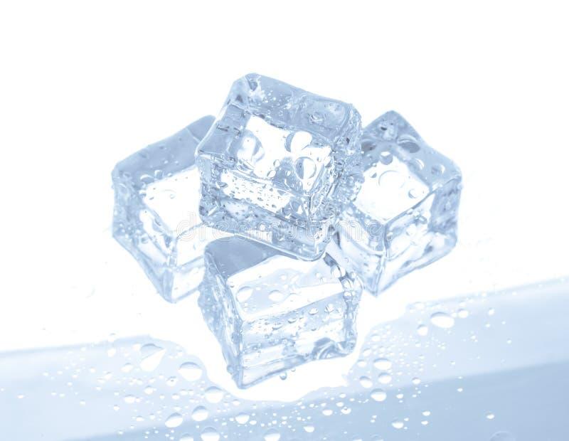 Κύβοι πάγου με τις πτώσεις νερού που απομονώνονται στο λευκό στοκ εικόνα με δικαίωμα ελεύθερης χρήσης