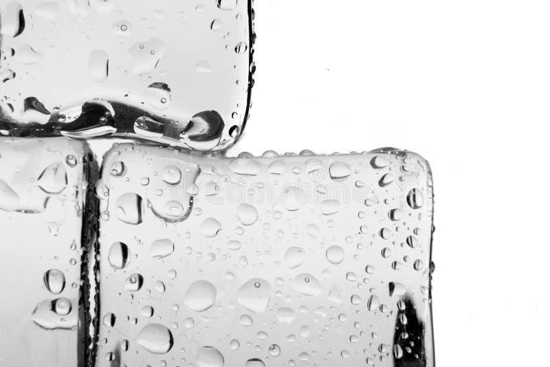 Κύβοι πάγου που απομονώνονται στο λευκό στοκ εικόνες