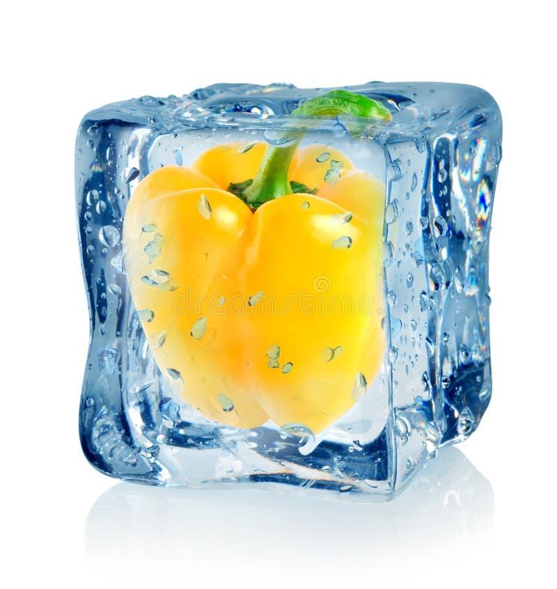 Κύβος και πιπέρι πάγου στοκ φωτογραφίες με δικαίωμα ελεύθερης χρήσης