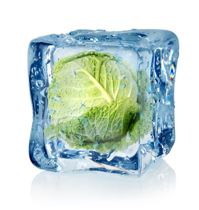 Κύβος πάγου και λάχανο κραμπολάχανου στοκ φωτογραφία