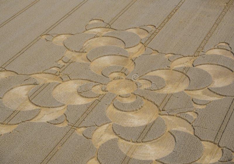 Κύκλος συγκομιδών cornfield κοντά σε Mammendorf, Βαυαρία, Γερμανία στοκ φωτογραφία