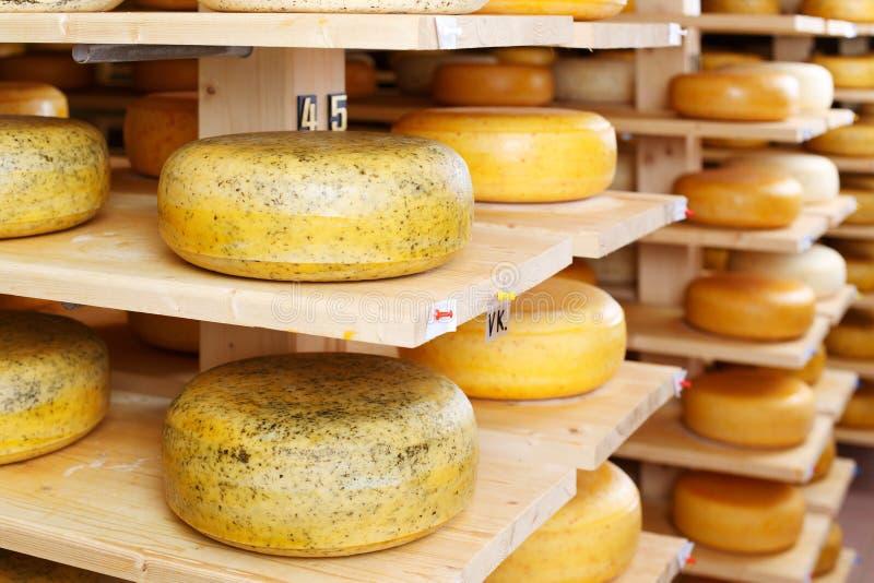 Κύκλοι τυριών στην αποθήκη εμπορευμάτων εργοστασίων στοκ εικόνες