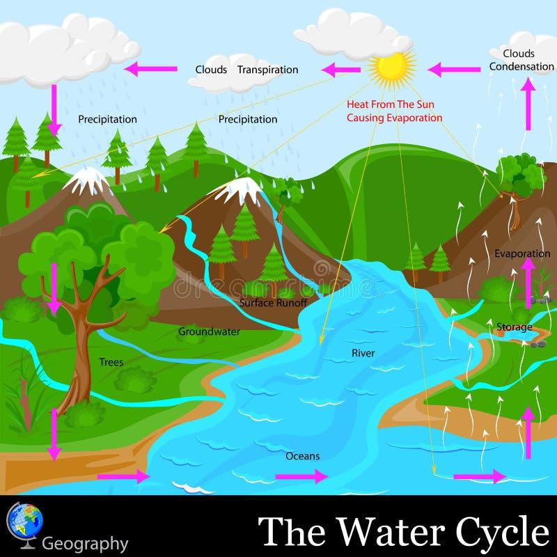 Κύκλος νερού διανυσματική απεικόνιση