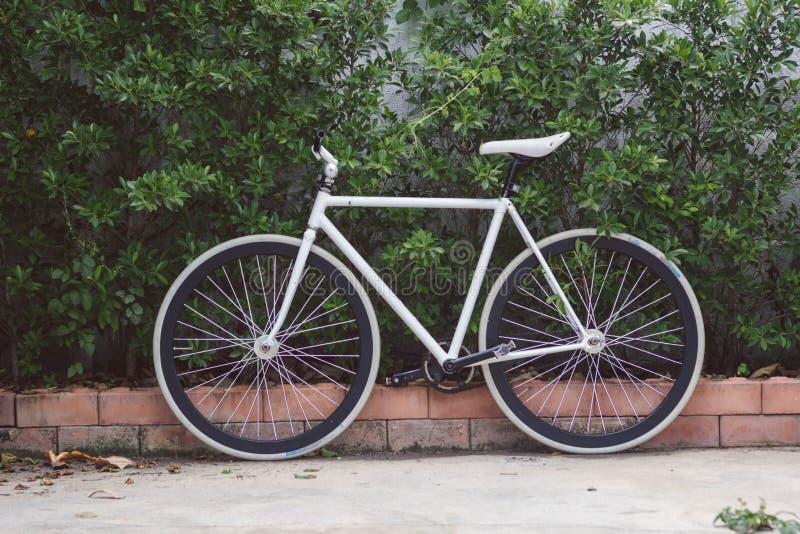 Κύκλος ποδηλάτων στοκ εικόνα
