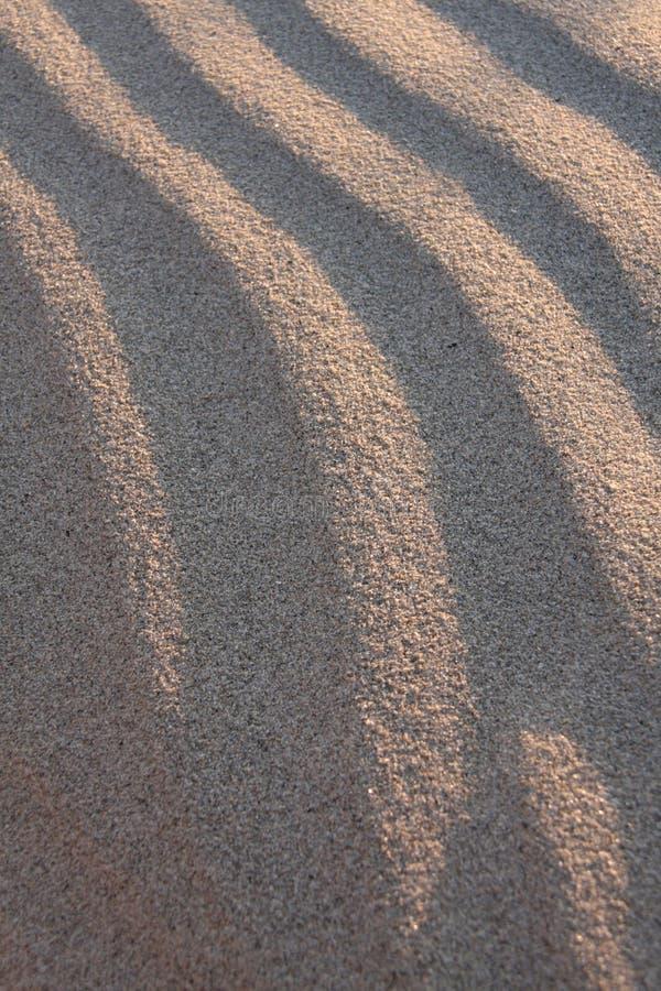 κύματα άμμου στοκ φωτογραφία